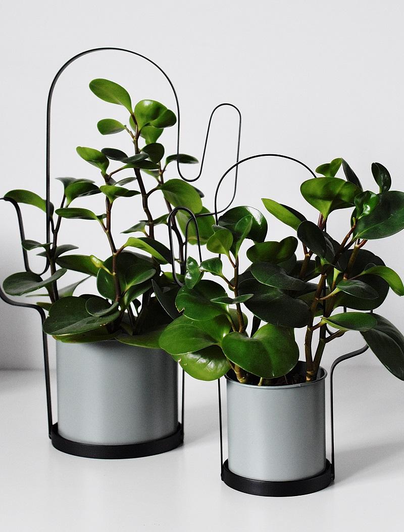Donica Kaktus W Miętowym Kolorze Metalowa Skandynawski Styl